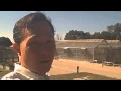 Real Change  Aquaponics _ Hydroponics _ Vertical Farming