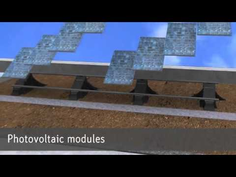 Solar and Green Roofs: The Sun-Root System