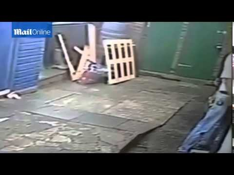 Builder is caught urinating on a customer's garden fence