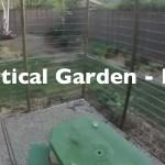 Vertical Gardening – DIY Cucumber Trellis
