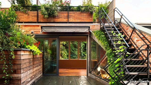 Wall and Rooftop Gardens, Living Walls and Green Roofs