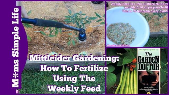 Mittleider Gardening: Weekly Feed Day!
