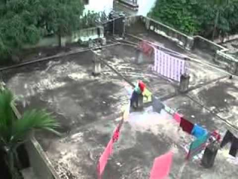 Roof gardening Necessity In Bangladesh