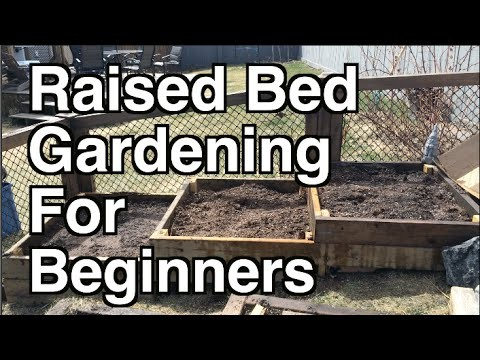 Raised Bed Gardening For Beginners. Site Selection, Organic Soil and Mulch
