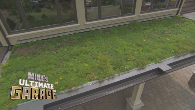 """Green Roof"" – Mike's Ultimate Garage: Inside Look"