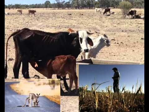 Barnaby Joyce & Aus Farmers saved by Vertical Farms?