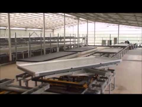 Commercial Level Hydroponic Vertical Farming Factory of Leafy Vegetables