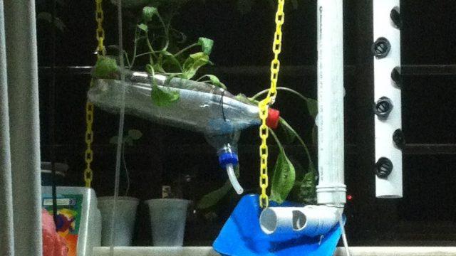 DIY Aeroponic + Aquaponic + Air-Lift Pump Vertical Farming System