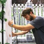 Labor and Vertical Farming: Stacked vs. Vertical Plane Production