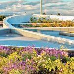 Green Roof Garden – Auto West BMW Eco-Luxury Feature