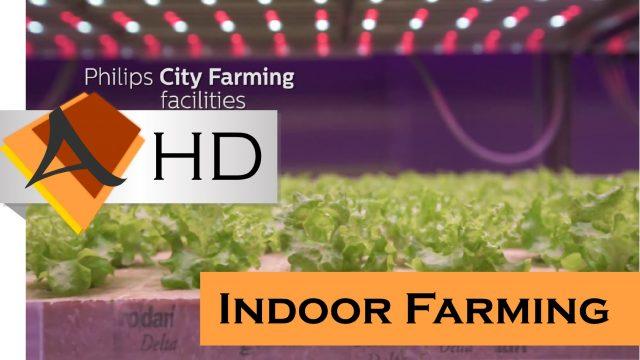 Indoor Farming – Philips City Farming – Tech News 2016