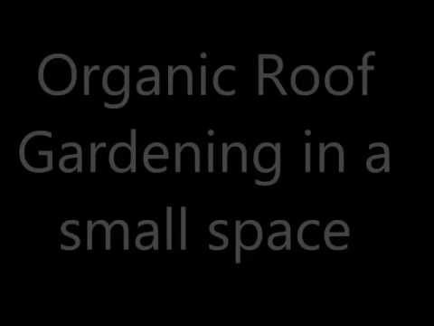 Organic Roof Gardening in a small space using waste of household