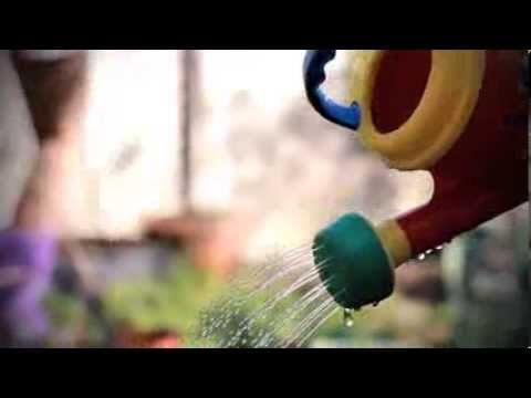 Eco Gardening Club
