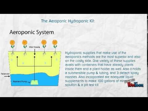 A Beginner Guide To Popular Hydroponic Kits