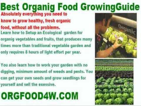 growing organic tomatoes nz