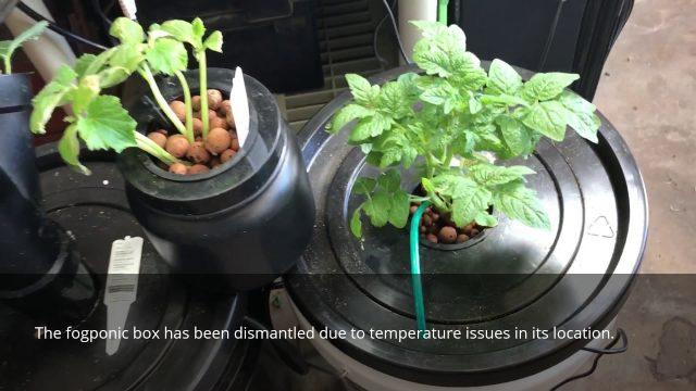 DIY hydroponic grow systems