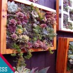 (SIMPLE and EASY) Create An Awesome Wall Decoration With These Succulent Vertical Garden Ideas