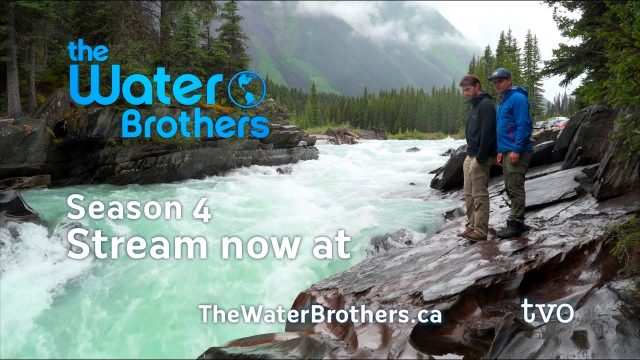 Vertical Farms – The Water Brothers