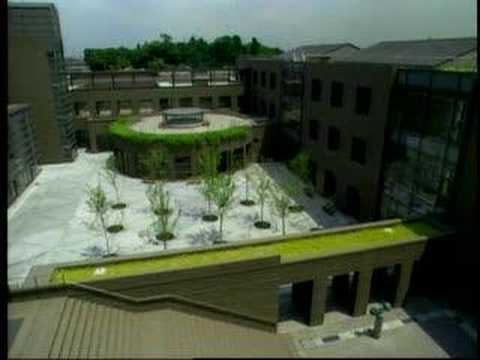 G-Sky Green Walls and Roofs – Pulse on America
