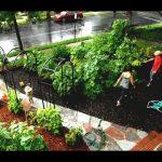 43 Front Yard Vegetable Garden Design Ideas