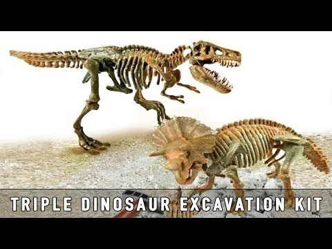 by KGDinosaurs Excavation Kit Toy Showcase!