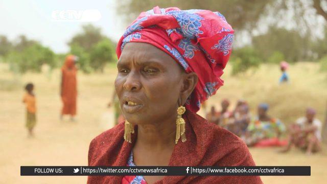 #DesertSeries: Senegal's Great Green Wall