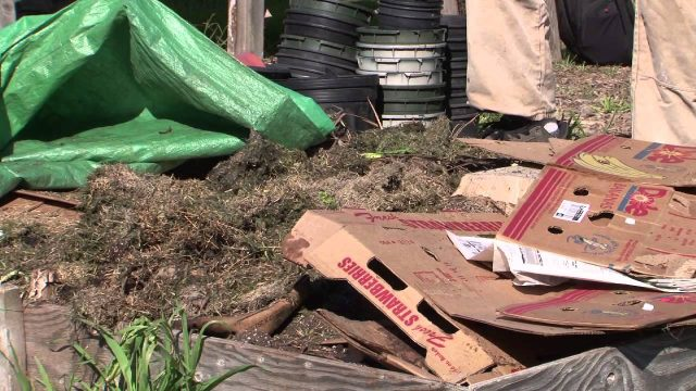 How to Compost Leaves & Organic Matter : Vegetable Gardening