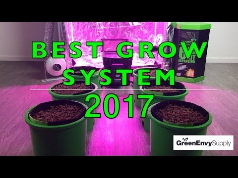 Oxygen Pot Systems Review – Best Hydroponic Grow System