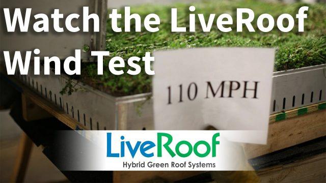Green Roof Wind Test: LiveRoof