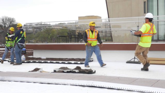 Landscape architect talks about Capitol Federal Hall's green roof