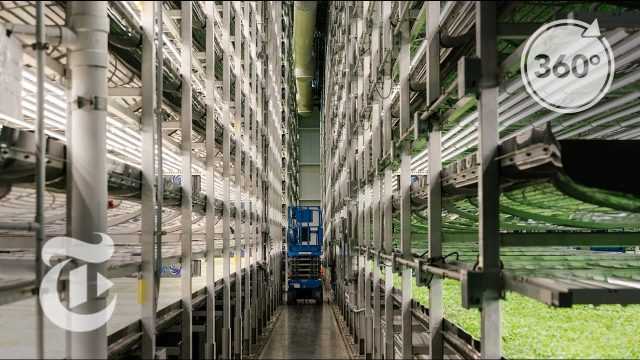 A Vertical Farm Grows In Newark | The Daily 360 | The New York Times