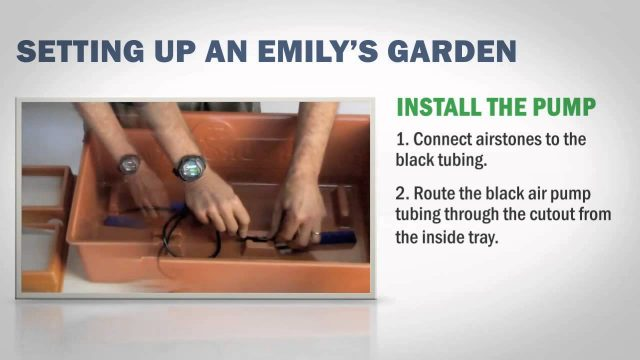 Setting Up the HydroFarm EMSYST Emily's Garden All-in-One Hydroponic System