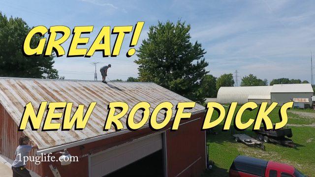 new roof dicks
