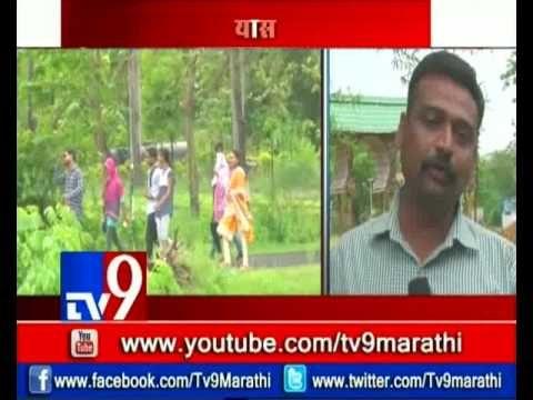 Amravati Forest Dept. Build Bamboo Garden in City | गार्डनमुळे शहराच्या सौंर्द्यात भर-TV9