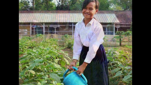 School gardens in Cambodia