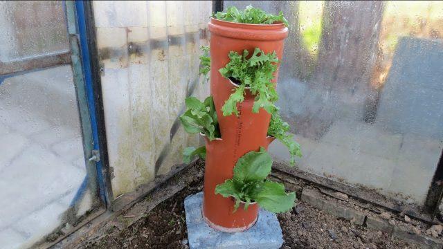 Vertikaler Garten für Gemüse selber machen .