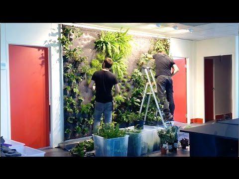 creating a green wall