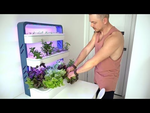 Future Indoor Garden – Top 8 Indoor garden technology | hydroponic system | don't have to buy