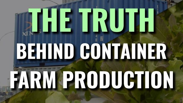 The Truth Behind Container Farm Yields