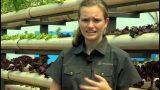 13-year old's successful aquaponics & aquaponics business