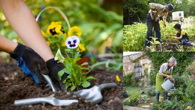 WONDERFUL Benefits Of Gardening