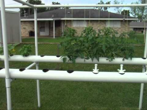 My PVC pipe hydroponic garden explained