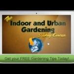 Free Gardening Mini-Course – Learn Indoor Gardening