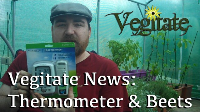 Greenhouse Thermometer and Beet Growing Contest – Vegitate News