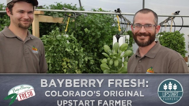 BayBerry Fresh: An Innovative Vertical Farm in Ft. Collins