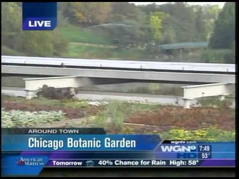 WGN Around Town at the Plant Conservation Science Center