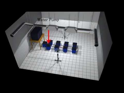 Under Current Deep Water Culture Hydroponic System: animated walkthrough
