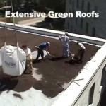 Building a Green Roof Part 1: Introduction