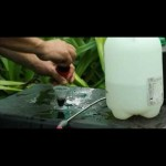 Hydroponic Gardening BAC Instructional Video Part 3 of 3