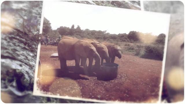 Pittsburgh Rotary- Hekima Place-Kenya Visit 2013